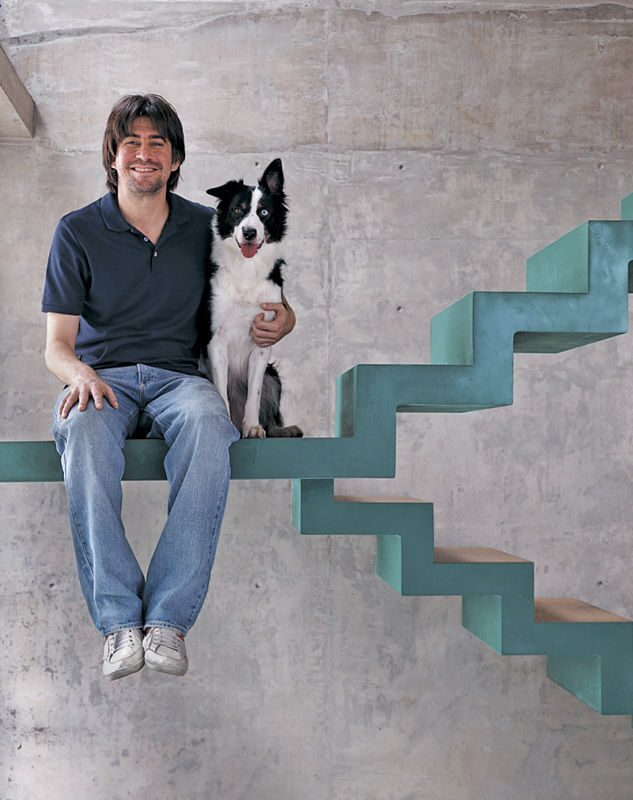 blog-feature-stairs-green-concrete-modern-dog